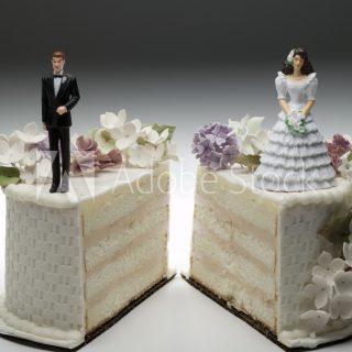 배수진 배동성 이혼